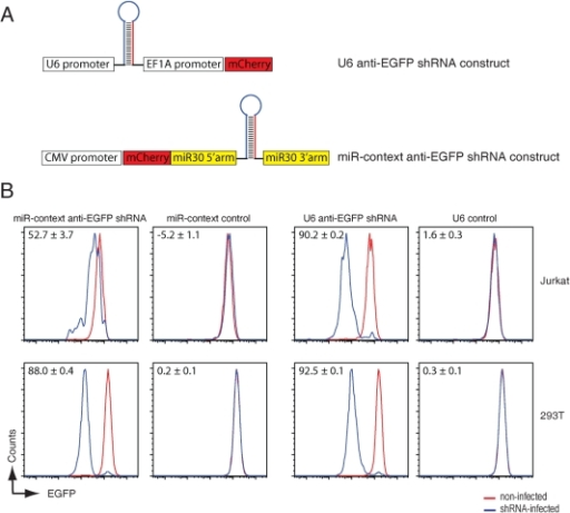anti-EGFP shRNAs expressed from a miRNA backbone are less efficient in target-knockdown in Jurkat T cells than in 293T cells.A) schematic representation of the miR-context anti-EGFP shRNA construct cloned in the 3′UTR of mCherry which is expressed under the control of the polymerase II CMV promoter (lower panel) and the control anti-EGFP shRNA expressed from a mouse polymerase III U6 promoter (top panel). B) EGFP-expressing Jurkat T cells (top panels) or 293T cells (lower panels) were infected at an MOI of <0.2 with anti-EGFP shRNAs expressed from a mouse U6 promoter (U6 anti-EGFP shRNA) or from a miR-30 backbone expressed from a CMV promoter (miR-context anti-EGFP shRNA) or the relevant control viruses that lack shRNA inserts. Cells were allowed to grow for 8 days and the expression of EGFP (to monitor knockdown) and mCherry (as marker for infected cells) were assessed by flow cytometry. The indicated percentage of EGFP knockdown is calculated by ((Geo-mean of uninfected cells minus Geo-mean of infected cells)/Geo-mean of uninfected cells)*100. The presented data is a representative experiment of 2 experiments performed in triplicate.