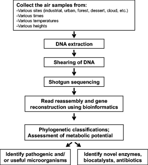 Flow chart of the process involved in shotgun metagenom | Open-i