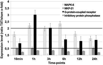Genes encoding for molecules involved in intracellular signaling following blunt chest trauma. Expression ratio of trauma lungs/sham lungs >2 was defined as upregulation, a ratio of <0.5 as downregulation. MAPK mitogen activated protein kinase, MKP mitogen activated protein kinase phosphatase. Displayed are mean values ± SEM