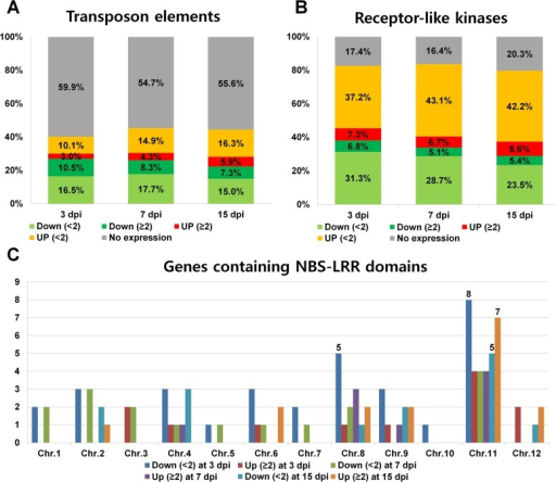 Expression of rice genes associated with transposon elements, receptor-like kinases, and NBS-LRR proteins in response to RSV infection.(A) Expression of genes related to transposon elements (TEs). A total of 17,271 TEs were selected based on the rice genome annotation project. Genes were divided into five groups: not expressed (gray); down-regulated with < 2-fold change (green color); down-regulated with > 2-fold change (dark green color); up-regulated with < 2-fold change (orange color); and up-regulated with > 2-fold change (red color). (B) Expression of genes encoding receptor-like kinases. A total of 1,070 receptor-like kinases belonging to 50 families were selected based on a previous study [39]. (C) The number of expressed NBS-LRR genes on each rice chromosome. A total of 405 rice genes that contained an NBS-LRR domain were selected. The bar graph indicates the number of expressed NBS-LRR genes on each chromosome.