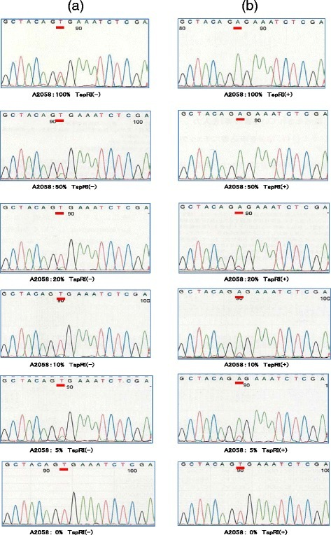 Sequence analysis of samples from six mixtures containing 0–100 % BRAF V600Emutation(+) cells. (a) Sequences of undigested products, TspRI (-): Where material was derived from 100 % A2058 cells (top panel) the mutant sequence, GAG, contributed approximately 50 % of the total, allowing clear categorization of sample as mutation (+). In all other cases (0–50 %, A2058 cells), it was difficult to judge whether the samples were mutation (+) or (-). (b) Sequences of digested products, TspRI (+): All samples containing the mutated (GAG) sequences demonstrated superior amplification of this in comparison to the wild type (GTG) after treatment with TspRI. The negative control containing 0 % A2058 cells (bottom panel) did not show amplification of the mutant sequence. Hence, the BRAF mutation could detected in samples containing as little as 5 % of A2058 cells (equating to 2.5 % of total DNA)