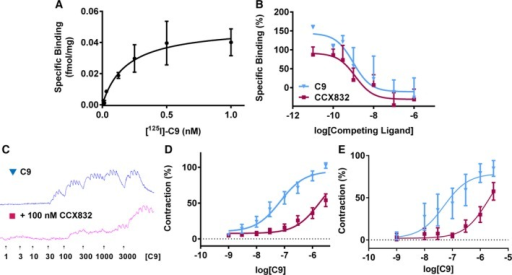 Binding and function of CMKLR1 in human tissues. Radiolabeled binding studies reveal that (A) C9 binds to 1 site, with a subnanomolar affinity (KD = 0.53±0.31 nmol/L; Bmax=0.05±0.007 fmol/mg; n=3), and B, unlabeled C9 (▼, pKi=9.11±0.52; n=5) and CCX832 (■, pKi=8.65±0.38; n=6, pink) compete for all the binding of radiolabeled C9 at native receptors. C9 induced a concentration‐dependent contraction of human vessels (blue), which was blocked by pretreatment with CCX832 (100 nmol/L, pink). Raw trace of the response in SV (C) and the corresponding concentration‐response curves to (▼) C9 and (■) C9+100 nmol/L CCX832 in human SV (D; n=6 patients) and resistance arteries (E; (n=5 patients). Responses are shown as % of maximal response to C9 and expressed as mean±SEM. CMKLR1 indicates chemokine‐like receptor 1; SV, saphenous vein.