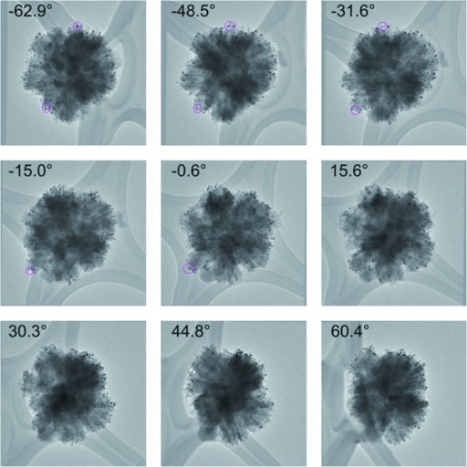 A selection of images used for the TEM tilt series of the 5% Au-RANR catalyst after in situ PXRD measurements. Selected Au nanoparticles were tracked using fiducial tracking during the rotation to confirm their positions. The reconstruction video can be accessed in the ESI.†