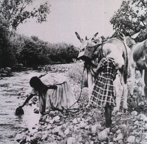<p>A woman is dipping a bucket in a stream; a young girl is standing to the right, and two mules, one loaded with packages, wait nearby.</p>