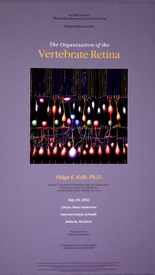 <p>Pinkish gray poster with the center showing a model of the structure of the retina. The print on the poster is black, white, or a yellowish orange, the phrase &quot;vertebrate retina&quot; and the speaker in the yellowish orange print.</p>