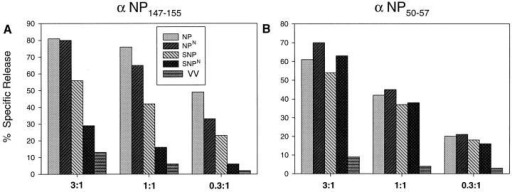 Comparison of presentation of NP147-155 to NP50-57.  L-Kd cells infected with the rVV  indicated were tested for lysis by  TCD8+ lines specific for NP147-155  or NP50-57 at the indicated E/T.
