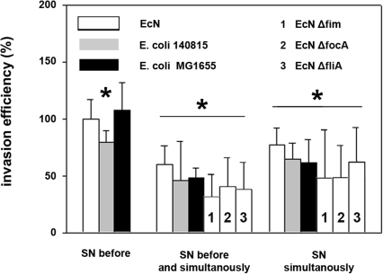 Invasion efficiency of Salmonella Typhimurium into IPEC-J2 cells after incubation with E. coli culture supernatants.Confluent monolayers of IPEC-J2 cells were pre-incubated (SN before) and/or co-incubated (SN simultaneously) with E. coli supernatants (SN). Cells were infected with Salmonella Typhimurium using an MOI of 100∶1 Salmonella to host cells. Invasion levels in percent (%) are expressed as invasion of Salmonella relative to invasion without pre- and/or co-incubation with E. coli SN. The data are the mean ± S.E.M. of at least three separate experiments in duplicate wells. * = p<0.05 compared to Salmonella infection without influence of E. coli SN. EcN: E. coli Nissle 1917.