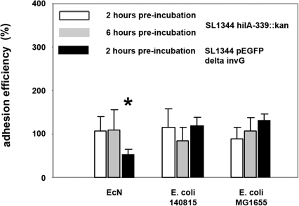 Adhesion efficiency of Salmonella Typhimurium to IPEC-J2 cells after pre-incubation with E. coli.Confluent monolayers of IPEC-J2 cells were pre-incubated with E. coli Nissle 1917 (EcN), E. coli 140815 or E. coli MG1655 using an MOI of 100∶1 E. coli to host cells. After two or six hours, cells were washed and infected with non-invasive Salmonella Typhimurium SL1344 hilA-339::kan or SL1344 pEGFP invG-339::kan using an MOI of 100∶1 Salmonella to host cells. Adhesion levels in percent (%) are expressed as adhesion of Salmonella relative to adhesion without pre-incubation with E. coli (Salmonella mono-infection). The data are the mean ± S.E.M. of at least three separate experiments in duplicate wells. * = p<0.01 compared to Salmonella mono-infection.