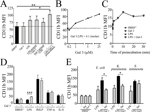 Gal 3 specifically enhances LPS-mediated neutrophil activation and requires a direct interaction with LPS for its effect.A: PMNs were primed for 30 min at 37°C with Gal 3 (0.2 µM) or E. coli LPS (1 µg/mL) and then stimulated with LPS (1 µg/mL) or Gal 3 (0.2 µM), respectively. Alternatively, Gal 3 (1 µM) and LPS (5 µg/mL) were preincubated together for 30 min at 37°C and then diluted to 0.2 µM (Gal 3) and 1 µg/mL (LPS) to be used to stimulate PMNs (n = 2). B: Effect of increasing LPS and Gal 3 concentrations in the pre-incubation mixture. Increasing concentrations of Gal 3 (0.2 µM to 25 µM) and LPS (1 µg/mL to 125 µg/mL) were preincubated together for 30 min at 37°C. They were then diluted in HBSS2+ to the final Gal 3 − 0.2 µM and LPS – 1 µg/ml concentrations and added to PMN for a 45-min incubation at 37°C. C: Time-response curve of LPS and Gal 3 preincubation. Gal 3 (7 µM) and LPS (35 µg/mL) were preincubated together for 0–30 min, as indicated, at 37°C and then diluted to 0.2 µM (Gal 3) and 1 µg/mL (LPS) to be used to stimulate PMNs for a 45-min incubation at 37°C (representative from 2 independent experiments). D: PMNs were stimulated with LPS (1 µg/ml), fMLP (10−6 M), TNF-α (10 ng/ml) or IL-8 (25 ng/ml), which had all been preincubated without (black) or with Gal 3 (0.4 µM, grey) for 30 min at 37°C. Neutrophil CD11b expression was measured as in figure 1 (n = 5). E: Gal 3 effect on neutrophil activation by LPS from various strains of bacteria. Gal 3 (1 µM) was preincubated with 10 µg/ml LPS from E. coli, K. pneumonia or S. minnesota R7 for 30 min at 37°C, in presence or absence of 10 mM lactose (lac). Then, each mixture was diluted to 0.2 µM (Gal 3) and 1 µg/mL (LPS) concentrations and used to stimulate PMNs (2×106/mL) for 45 min at 37°C, and analyzed for CD11b expression as above. Results are expressed as mean fluorescence intensity (MFI) (n = 3). * p<0.05, **p<0.01, ***p<0.001.