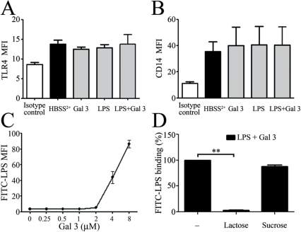 Gal 3 enhances LPS binding to the neutrophil surface.A and B: PMNs (2×106/mL) were stimulated for 45 min with Gal 3 (0.4 µM) and E. coli LPS (1 µg/ml), preincubated as in figure 3. TLR4 (A) and CD14 (B) expressions were determined by flow cytometry. The results are expressed as mean fluorescence intensity (MFI) (n = 3). C: FITC-labeled E. coli LPS (12.5 µg/mL) was preincubated with increasing molar concentrations of Gal 3 (from 0.25 to 8 µM) and then added to PMNs (10×106/mL) for additional 20 min incubation at 37°C with (n = 3) D. Gal 3 was treated with 12.5 mM lactose or sucrose for 15 min before being incubated with FITC-LPS (12.5 µg/mL) and added to PMNs (10×106/mL). The binding of FITC-LPS was determined by flow cytometry and expressed as mean fluorescence intensity (MFI).