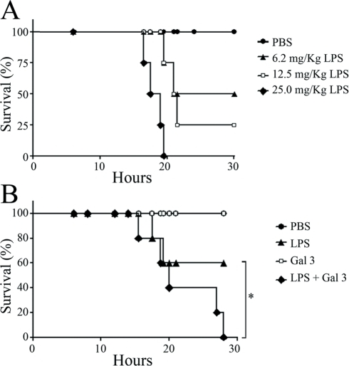 Gal 3/LPS interaction decreases mice resistance to the lethality of LPS.A: Groups of 5 Balb/C mice were challenged with PBS, 6.2, 12.5 or 25 mg/kg of E. coli LPS by intraperitoneal (ip) injection. B: Mice (5 per group) were challenged with 500 µl of PBS, Gal 3 (40 µM), 6.2 mg/kg LPS or with a mixture of LPS (6.2 mg/kg) and Gal 3 (40 µM) preincubated for 15 min. The mortality rate was monitored regularly and represented as percentage of survival. *p<0.05.