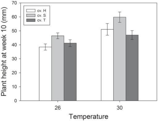 Effects of temperature and cultivar (Hunter River, H; Sequel, S and Trifecta, T) on plant growth (height) 10 weeks after sowing. Mean values (± standard errors) of significant treatment factors (temperature and cultivar) in the final model shown.