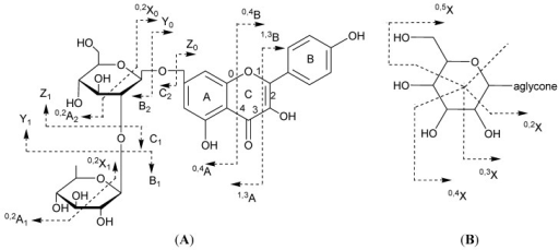 Ion nomenclature used for flavonoid glycosides (illustrated on kaempferol 7-O-rhamnosyl-(1→2)-glucoside (A) and a C-hexoside derivative (B)).