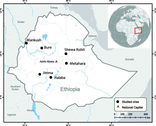 Map showing the geographical distribution of the sample sites in Ethiopia. Community samples were collected in Asendabo and clinical samples were collected in the other six sites.