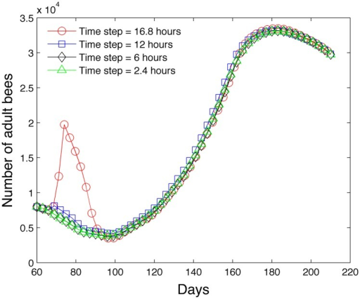 Effect of time step on the accuracy of the model in predicting the number of adult bees.