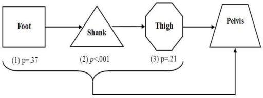 A flow chart describing the adjusted effect of the foot, shank and thigh on the pelvis taking into account one another.p value indicates significance of effect.Adjusted effect of the foot on the pelvis;Adjusted effect of the shank on the pelvis;Adjusted effect of the thigh on the pelvis.