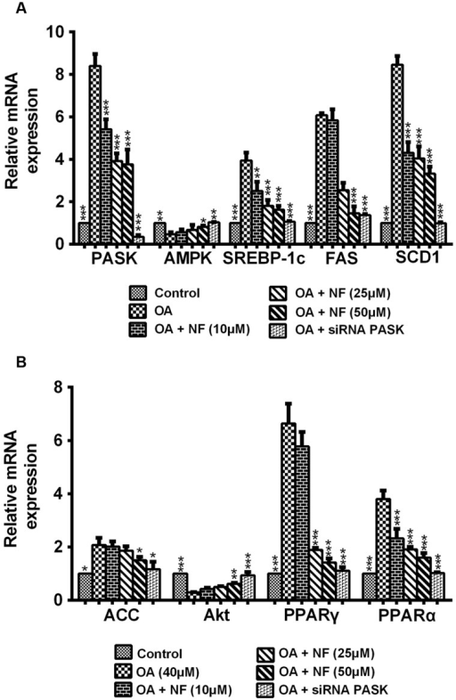 "(A,B) The effect of nuciferine or siRNA PASK on lipogenic genes related to hepatic steatosis in HepG2 cells. SiRNA PASK HepG2 cells and HepG2 cells incubated with increased concentrations of nuciferine (NF: 10, 25, and 50 μM) both treated with OA (40 μM). The measurement was described in the Section ""Materials and Methods"". Values are Mean ± SEM of three independent experiments performed in triplicates. Significant differences with OA group were designated as ∗P < 0.05, ∗∗P < 0.01, and ∗∗∗P < 0.001. (Control, siRNA scrambled; NF, Nuciferine.)"