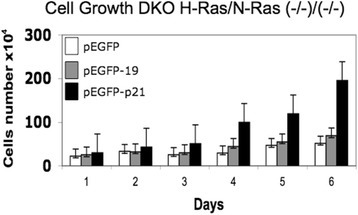 P19 H-Ras does not activate cell growth. DKO H-Ras(−/−)/N-Ras(−/−) fibroblasts that stably express pEGFP (negative control), pEGFP-p19 and pEGFP-p21 were studied by direct cell-proliferation assay. Cells were harvested and plated in 96 wells (10,000 cells/well) on six microplates in sextuplicate and incubated at 37 °C, 5 % CO2 with DMEM/10 % FCS. After the desired time, the microplates were washed and frozen. Cells were quantified with the green fluorescent dye CyQuant (Invitrogen) according to the manufacturer's instructions. Fluorescence measurements were performed using a microplate reader with excitation at 485 nm and detection at 530 nnm