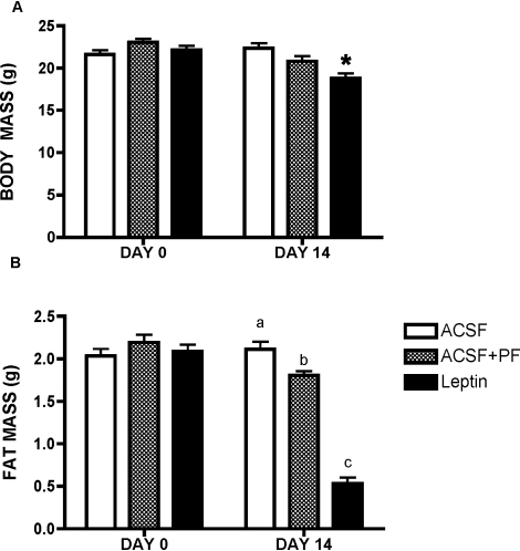 Body Weights (A) And Fat Content (B), Before And After 14 Days Of ICV Leptin Treatment Compared With ACSF And Pair-Fed Control Mice.All data presented as means ± SEM, N = 6–7/group. * p<0.05. Different superscript letters indicate significant differences at p<0.05.