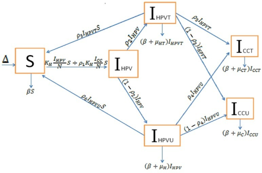 Systems Dynamic Model of HPV in causation of CC.
