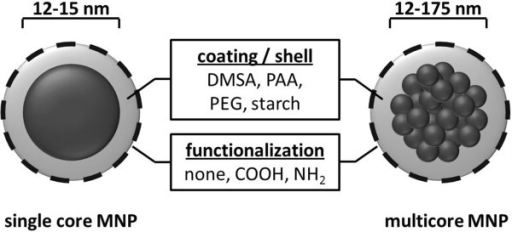 Scheme of idealistic single core and multicore MNP with different core sizes, coatings, and functionalizations.