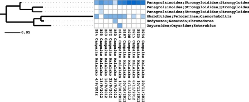 Heatmap withde novo phylogenetic tree. Heatmap showing relative abundances of OTUs together with corresponding phylogenetic tree inferred using just OTU centroid sequences. This figure was generated using the Séance 'heatmap' command.