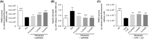 TRO40303 provides protection in hepatocyte intoxication models in vitro. Primary mouse embryonic hepatocytes (PMEH) were isolated as described in material and methods section. The cells (PMEH or HepG2) were pretreated for 1 h with compounds at a final constant DMSO concentration (0.1%) (n = 8 for all conditions), then intoxicated in the presence of compounds as follows. For palmitate intoxication, PMEH were intoxicated for 24 h at 0.2 mmol/L and viability was assessed using calcein staining (A), whereas HepG2 were subjected to 48 h 0.2 mmol/L palmitate intoxication for LDH cell death assessment (B). For anti-Fas antibody intoxication, PMEH were intoxicated for 24 h with 100 μg/mL Jo2 and 2 μg/mL CHX and viability was assessed using calcein staining (C). Results are presented as mean ± SEM and statistical analysis was performed by one-way analysis of variance followed by Dunnett's posttest compared to the toxic control (**P < 0.01, ***P < 0.001). Survival of control, nontreated cells (NT), except for DMSO, is shown for comparison. Data shown are for a representative example of three independent experiments performed using three different cell culture preparation. CHX, cycloheximide; DMSO, dimethyl sulfoxide.
