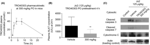 TRO40303 reduces apoptosis in mice intoxicated with Jo2. (A) TRO40303 was administered p.o. to mice at 300 mg/kg in olive oil. Blood samples (n = 3 mice per time point) were taken at 1, 2, 4, 8, and 24 h after drug administration and quantification of TRO40303 in plasma samples was performed by LC-MS-MS to analyze the pharmacokinetic profile of the compound. (B) The dose of 125 μg/kg Jo2 antibody was administered i.p. to mice 4 h after TRO40303 treatment (p.o. dose of 300 mg/kg in olive oil compared to vehicle). ALAT activity was assayed in plasma 24 h postintoxication. Results are presented as mean ± SEM and statistical analysis was performed by t-test (**P < 0.01). (C) Western blot analysis of cleaved caspase 3, cleaved caspase 7, and cytochrome C on 60 μg of cytosolic liver extracts from mice treated as described in B with 125 μg/kg Jo2 ± 300 mg/kg TRO40303 p.o. compared to cytosolic liver extracts prepared from a control untreated mouse. Western blot actin levels were used as a loading control ensuring that the same amount of protein is loaded in each lane. p.o., per os.