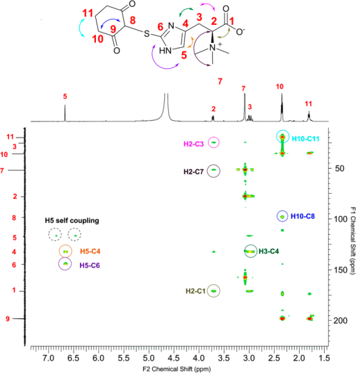 HMBC-NMR characterization of the sulfenic acid-dimedone adduct from the EgtE reaction.