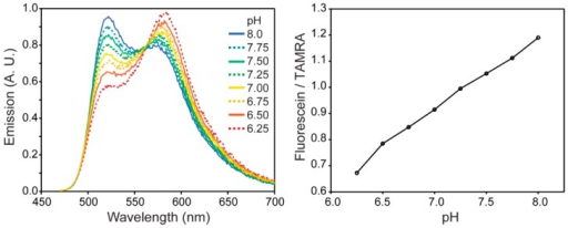 Coupling fluorescein and TAMRA dyes to the surfaces of Fe2O3 nanoparticles creates a FRET pair between the two chromophores to produce a ratiometric emission spectrum as a function of pH.