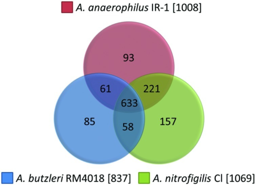 Comparative genomics. Unique genes from A. anaerophilus IR-1 (1008), A. nitrofigilis CI (1069), and A. butzleri RM4018 (837) annotated in RAST was extracted and compared.