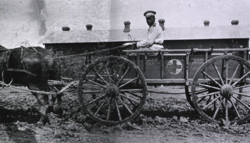 <p>A medical staff person sits in a medical wagon that is being pulled by a horse; a building is in the background.</p>