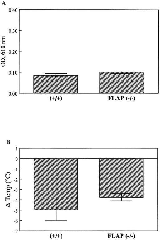 Passive systemic IgE-induced anaphylaxis. Flap (−/−) and  (+/+) mice received 20 μg of a monoclonal mouse anti–mouse DNP  IgE in 200 μl PBS intravenously. 24 h later basal body temperatures were  recorded, and mice received an intravenous injection of 1 mg DNP-HSA  and 0.5% Evans blue dye in 200 μl PBS to induce mast cell degranulation  and anaphylaxis. Basal body temperature was again recorded 30 min after  this injection. (A) Animals of the indicated genotypes were killed and  8-mm-diam ear discs were isolated. Extravasation of plasma proteins into  tissue was quantitated by extraction of dye with formamide and spectrophotometric analysis of extracts at 610 nm. Dye leakage into both the left  and right ears was recorded in this systemic response. (B) Change in basal  body temperature for Flap (−/−) and (+/+) mice 30 min after treatment  was recorded as another measure of systemic anaphylaxis. n = five Flap  (−/−) and four (+/+) mice. Error bars indicate SEM.