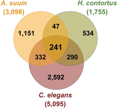"Protein Families in the Adult Intestine from A. suum, H. contortus, and C. elegans.In total, 5,587 intestinal protein families (IntFam) were built from the complete set of 9,918 translated intestinal genes sampled from the three species. Forty-one percent of all the intestinal genes were grouped into 910 multiple-species IntFam groups; 2,024 genes, including 752 from A. suum, 455 from H. contortus, and 817 from C. elegans, were found in a group of 241 families (IntFam-241) containing members from all three intestines. The IntFam-241 families likely represent an ancestral intestinal transcriptome involved in core cellular and physiological intestinal functions common to the investigated species or even to Nematoda, they are thus referred as the ""core"" IntFam-241 group."