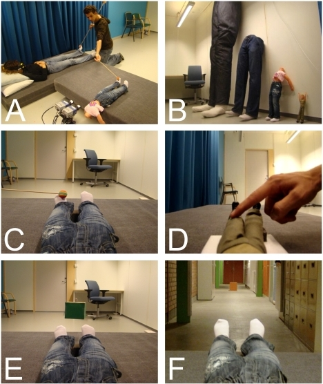 Experimental set-up.This figure displays the main experimental set-up (A), the four artificial bodies (B), and the image seen by participants during visuo-tactile stimulation (C), the Barbie doll experiment (D), object size estimation (E), and distance estimation (F).