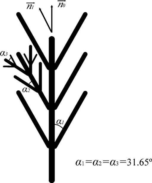 A scheme of the alternate growth mechanism.  is the direction perpendicular to (103) and  is perpendicular to (0001). The theoretical angle (α1,2,3) between the trunk and its branches is 31.65°.