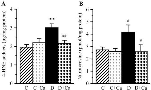 Lens 4-hydroxynonenal adducts and nitrotyrosine concentrations in control and diabetic rats maintained with or without cariporide treatment. C, control group; D, diabetic group; Ca, cariporide; 4-HNE, 4-hydroxynonenal. Mean ± SEM, n=6/group. *P<0.05 and **P<0.01 vs. the controls; #P<0.05 and ##P<0.01 vs. the untreated diabetic group.