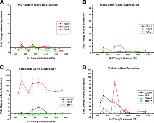 Change in pluripotent (A), mesoderm (B), ectoderm (C), and endoderm (D) gene expression during spontaneous differentiation of ESD3 embryonic stem cells due to changes in substrate stiffness. For pluripotent markers (Rex1, Oct4, and Sox2) there was either down regulation or no upregulation of gene expression after 5 days of differentiation. FGF8 (B, red line) was the only mesoderm marker that demonstrated any level of upregulation. The primitive ectoderm marker FGF5 (C, red line) was dramatically upregulated when compared to undifferentiated cells, however, this increase was notable for all substrate stiffnesses. The endoderm genes (D) CXCR4 and AFP demonstrated a strong upregulation in relation to the alginate substrates, while SOX17 and FOXA2 did not.
