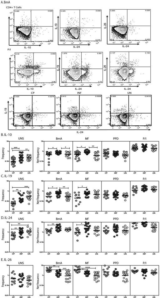 Filarial infection is associated with increased frequencies of IL-10, IL-19 and IL-24 expressing and decreased frequencies of IL-26 expressing CD4+ T cells.(A) A representative dot plot from a filarial - infected individual showing CD4+ T cell expression of IL-10, IL-19, IL-24 and IL-26 in response to BmA and PMA/Ionomycin and representative dot plots from CP, INF and UN individuals for CD4+ T cell expression of IL-19 and IL-24. The frequencies of CD4+ T cells expressing IL-10 (B), IL-19 (C), IL-24 (D) and IL-26 (E) at baseline and following stimulation with BmA, Mf, PPD and PMA/ionomycin in CP (n = 23), INF (n = 25) and UN (n = 15) individuals. Antigen – stimulated frequencies are shown as net frequencies with the baseline levels subtracted. The data are shown as scatter plots with each circle representing a single individual. P values were calculated using the Kruskal-Wallis test with Dunn's multiple comparisons (* p<0.05, ** p<0.01, *** p<0.001).