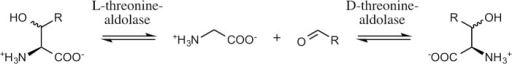 Reactions catalyzed by L- and D-threonine aldolases.