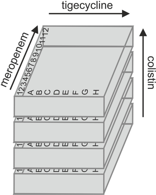 Schematic set-up of three-dimensional checkerboard technique.Concentrations of each drug increase towards the arrow. The FICI values were determined for each combination: meropenem / tigecycline, meropenem / colistin, tigecycline / colistin and meropenem / tigecycline / colistin.