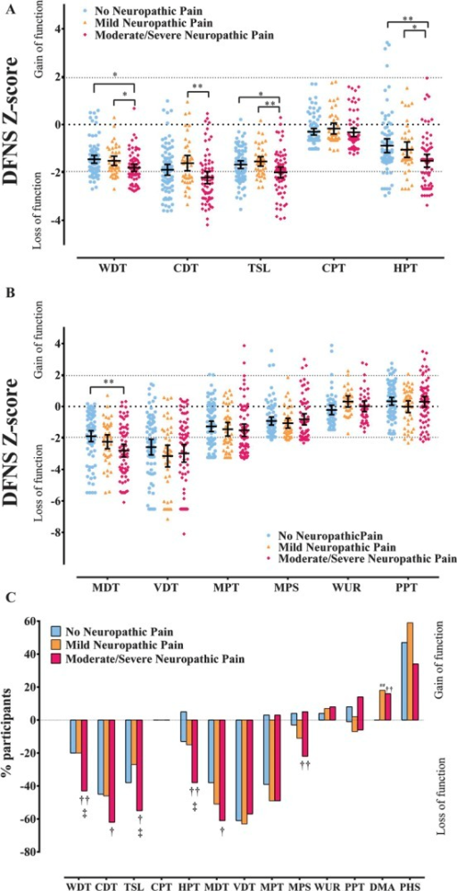 "(A) Scatter plot and mean ± 95% CI of z-scores for thermal quantitative sensory testing (QST) parameters in study participants with no neuropathic pain (NeuP), mild NeuP, and moderate/severe NeuP. One-way analysis of variance (ANOVA), least significant difference (LSD) post hoc test: *P < 0.05; **P < 0.01. (B) Scatter plot and mean ± 95% confidence interval of z-scores for mechanical QST parameters in study participants with no NeuP, mild NeuP, and moderate/severe NeuP. One-way ANOVA, LSD post hoc test: **P < 0.01. (C) Loss and gain of sensory function. Comparison of study participants with no NeuP, mild NeuP, and moderate/severe NeuP who have QST values outside the 95% confidence interval of the German research network of neuropathic pain reference database. The y-axis shows the percentage of patients in each group with 'gain' of sensory function plotted upwards and ""loss"" of sensory function plotted downwards. Data analysed with χ2 test of association: †P < 0.05, ††P < 0.01 between no NeuP and moderate/severe NeuP, ##P < 0.01 between no NeuP and mild NeuP, ‡P < 0.05 between mild NeuP and moderate/severe NeuP. CDT, cold detection threshold; CPT, cold pain threshold; HPT, heat pain threshold; MDT, mechanical detection threshold; MPS, mechanical pain sensitivity; MPT, mechanical pain threshold; PPT, pressure pain threshold; TSL, thermal sensory limen; VDT, vibration detection threshold; WDT, warm detection threshold; WUR, wind-up ratio."