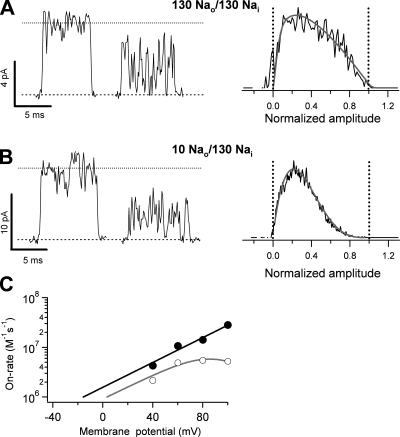 Kinetics of TPrA block depends on the extracellular sodium concentration. (A) Single-channel openings (left) in the absence of TPrA (left trace) and the presence of 2 mM TPrA (right trace) with isometric 130-mM NaCl solutions at 40 mV. The right panel depicts the normalized amplitude histogram from multiple traces as in the left panel. The β distribution fit yielded parameters of β = 8,563.7 s−1 and α = 10,971 s−1. (B) Single-channel openings (left) in the absence of TPrA (left trace) and the presence of 2 mM TPrA (right trace) with 10 mM NaCl in the extracellular and 130 mM in the intracellular solution at 40 mV. The right panel shows the normalized amplitude histogram with the β distribution fit superimposed. The parameters of the fit are: β = 26,919 s−1, α = 11,661 s−1. The amplitude histogram under low extracellular sodium conditions is left-shifted, indicating faster blocker kinetics under these conditions. (C) On-rates obtained from fits of the β distribution to histograms as in B under low sodium conditions, obtained from two different patches (filled circles). The black line is a fit to an exponential of the form:\documentclass[10pt]{article}\usepackage{amsmath}\usepackage{wasysym} \usepackage{amsfonts} \usepackage{amssymb} \usepackage{amsbsy}\usepackage{mathrsfs}\usepackage{pmc}\usepackage[Euler]{upgreek}\pagestyle{empty}\oddsidemargin -1.0in\begin{document}\begin{equation*}{\mathrm{k}}_{{\mathrm{on}}}{\mathrm{(V)}}={\mathrm{k}}_{{\mathrm{on}}}(0){\mathrm{exp}}({\mathrm{z}}_{{\mathrm{on}}}{\mathrm{V/kT}}).\end{equation*}\end{document}The values of the fit parameters are: kon(0) = 1.57 × 106 M−1 s−1; zon = 0.72 eo. The gray line corresponds to the fit to the on-rate under isometric 130 mM NaCl conditions in Fig. 5 C (open circles). Error bars are smaller than the symbols. The data indicate that the relief of block observed as a plateau for the on-rate at more positive potentials is a result of interactions between the blocker and the Na+ ions in the selectivity filter, and not due to diffusion limitation. Group data are presented as mean ± SEM.