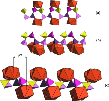 Details of the connections between the (PO3)∞ chains and the TbO8 polyhedra: a) view showing the two kind of bidentate attachments. b) view showing the bidentate attachments and the PO4 groups shared between two TbO8 square antiprisms belonging to two adjacent rows. c) view showing the shift (p/2) of one chain relative to the other.