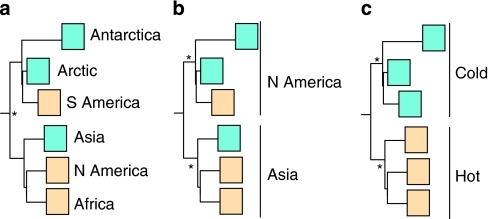Idealized phylogenies of hypothetical scenarios for global distribution of desert cyanobacteria.Scenario a, assumes ubiquitous distribution resulting in mixed geographic regions and mixed environments within a phylogeny. Here, root divergence is a relatively recent event. Scenario b, assumes allopatric speciation resulting in distinct geographic regions and mixed environments within a phylogeny (that is, N America and Asia are monophyletic groups). Here, root divergence times correspond with formation of continents. Scenario c, assumes environmental selection corresponding to global climatic change, resulting in a phylogeny with mixed geographic regions and distinct environments. Here, the root divergence times are significantly older than known ages of formation of continents. Asterisks indicate monophyletic groups. Brown boxes and blue boxes indicate hot and cold desert locations, respectively.
