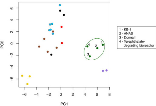 Principal component analysis of 25 metagenomes based on frequencies of COG categories. COG frequencies were normalized to metagenome size. Points are colored by sample type: green = contaminant-degrading microbial consortia, black = waste water/sludge samples, light blue = pristine groundwater and sediment sites, brown = soil samples, yellow = Hawaii Ocean Time Series samples, red = ammonia-oxidizing communities, purple = non-contaminant degrading microbial consortia. See Additional file 1: Table S9 for a full list of metagenomes used. All samples are publically available from the JGI IMG-M site (merced.jgi-psf.org/cgi-bin/mer/main.cgi).