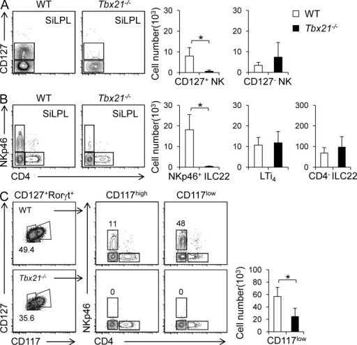 NKp46+ ILC22 and CD127+ NK cells are dramatically reduced in Tbx21−/− mice. Lymphocytes were isolated from siLP of WT and Tbx21−/− mice and analyzed by flow cytometry. (A) The left panel shows representative dot plots and the right panels show absolute number of CD127+ and CD127− CD3ε−NK1.1+ populations (mean ± SD). (B) Representative dot plots and absolute number of the different ILC22 populations. Values represent mean ± SD of each indicated population (WT, five mice; Tbx21−/−, six mice). Four independent experiments were performed. Asterisks denote P < 0.05. (C) Representative dot plots of Rorγt+ ILC populations (according CD127, CD117, CD4, and NKp46 expression) and absolute number (mean ± SD) of Rorγt+CD127lowCD117low ILC in WT and Tbx21−/− mice (WT, three mice; Tbx21−/−, three mice). Two independent experiments were performed. Asterisk denotes P < 0.05.