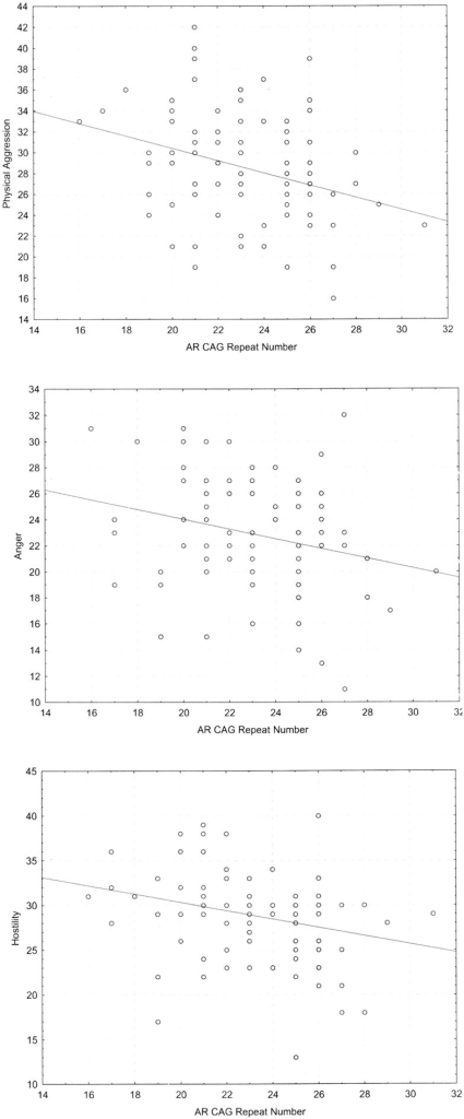 The distributions of the physical aggression (A), anger (B), and hostility (C) subscales as correlated with the number of CAG repeats in the AR gene.The ordinate numbers designate the self-rated scores according to the subscales of Buss and Perry's Aggression Questionnaire.