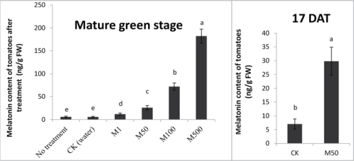 Melatonin content in tomato fruits after treatment. Tomatoes were treated without (water) or with melatonin in concentrations: 1, 50, 100, and 500 µM. The melatonin content of tomatoes after treatment at (A): mature green stage and (B): 17 DAT. Vertical bars at each time point represent the LSD when significant at P=0.05.