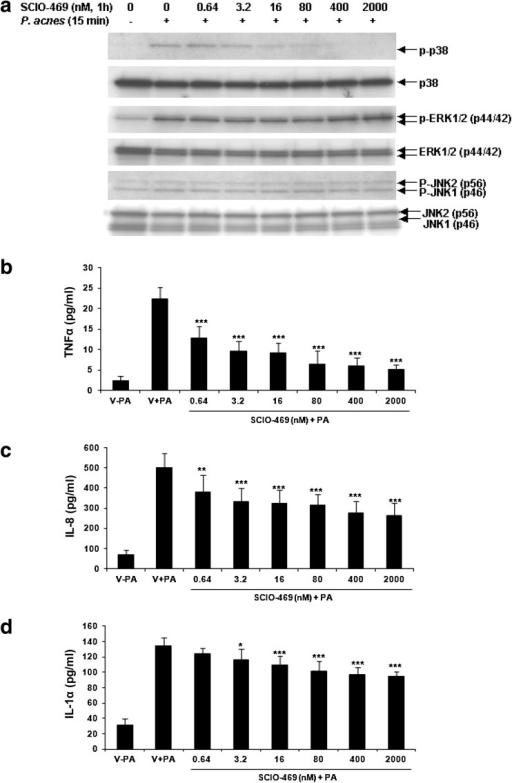Propionibacterium acnes-induced phosphorylation of p38, but not of ERK1/2 or JNK1/2, and the cytokine release was inhibited by a p38α inhibitor, SCIO-469, in human keratinocytes. a Western blots show that SCIO-469 inhibits P. acnes-induced phospho-p38 (p-p38) dose-dependently, but not of phospho-ERK1/2 (p-ERK1/2) or phospho-JNK1/2 (p-JNK1/2). b–c SCIO-469 inhibits the secretion of TNF-α (b), IL-8 (c), and IL-1α (d). Data are expressed as mean ± SD. p < 0.05 (*), p < 0.01 (**), p < 0.005 (***). ERK extracellular signal-related kinases, JNK c-Jun N-terminal kinases, TNF tumor necrosis factor, IL interleukin, PA Propionibacterium acnes
